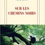 Sur les chemins noirs, Tesson, édition Gallimard, 15€