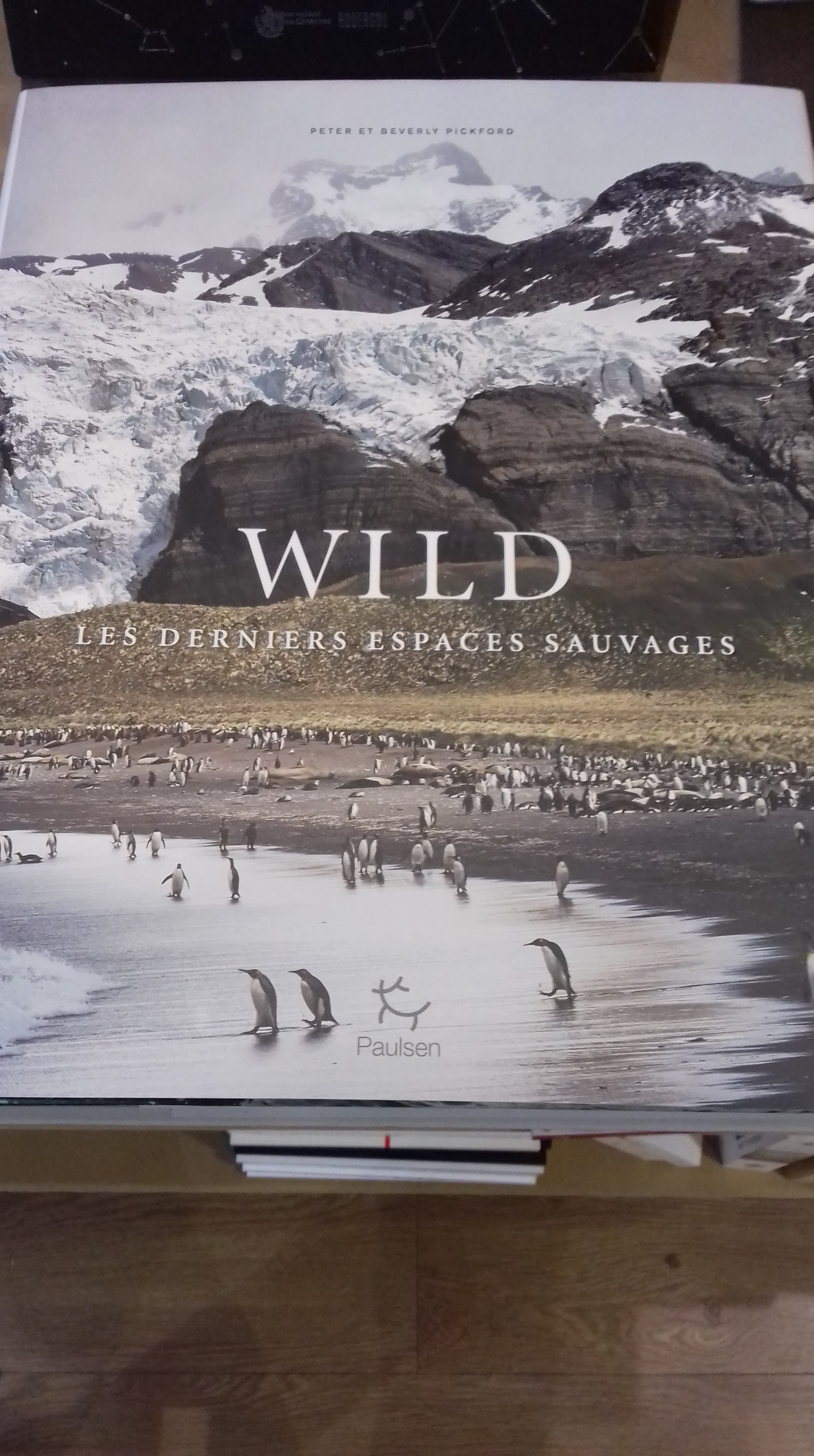 Wild, les derniers espaces sauvages - édition Paulsen - 49€