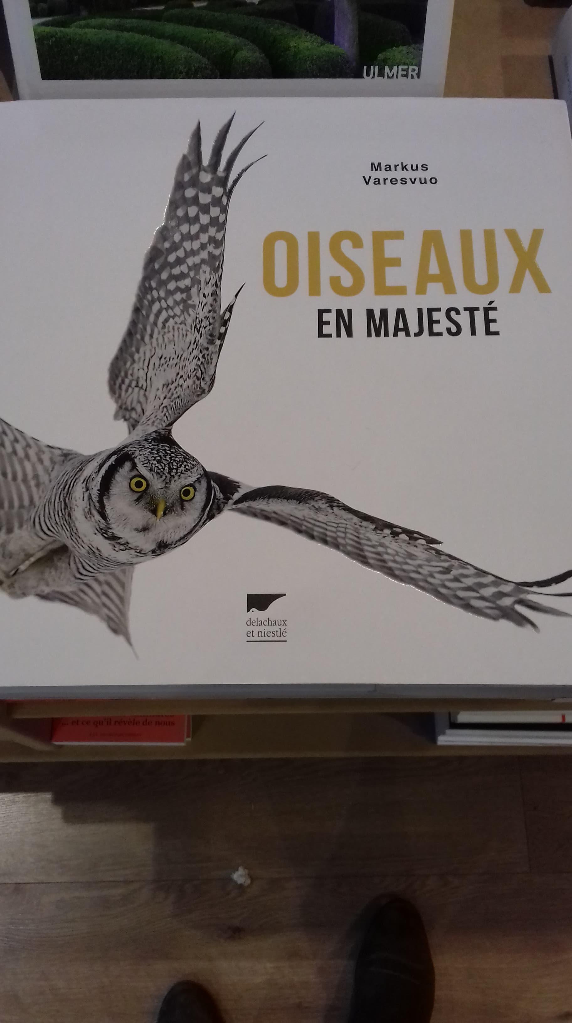 Oiseaux en majesté - Editions Delachaux et Niestlé - 35,90€